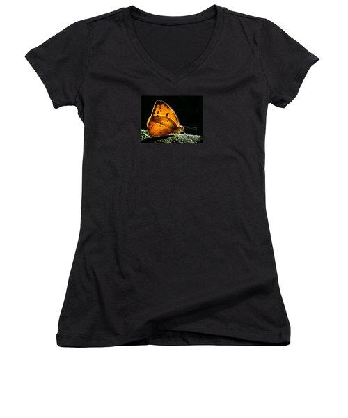 Illuminated Butterfly Women's V-Neck T-Shirt (Junior Cut) by Alice Cahill