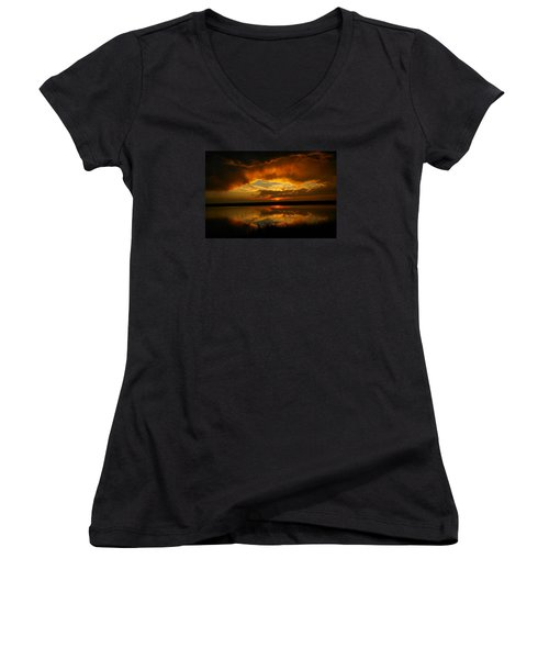 In All His Glory Women's V-Neck T-Shirt (Junior Cut) by Jeff Swan