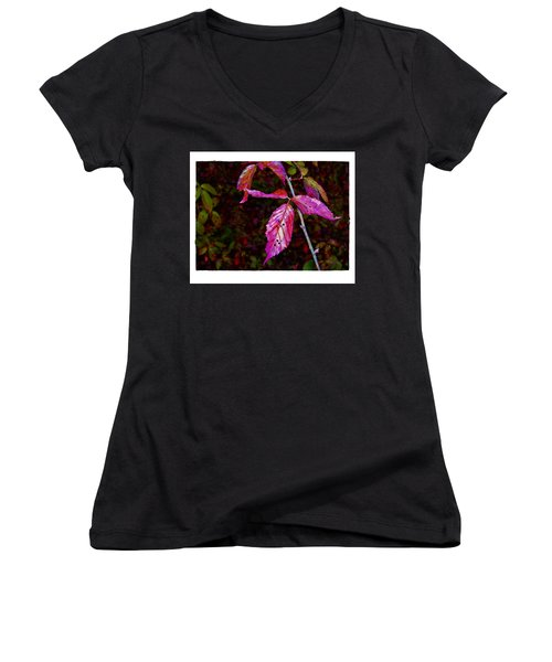 Women's V-Neck T-Shirt (Junior Cut) featuring the photograph In The Briar Patch by Judi Bagwell
