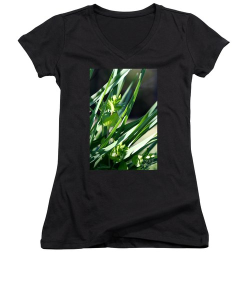 In The Grass Women's V-Neck