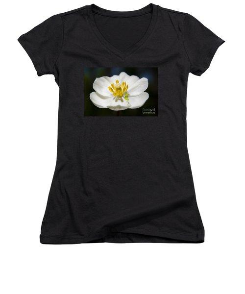 Inchworm  Women's V-Neck T-Shirt (Junior Cut)