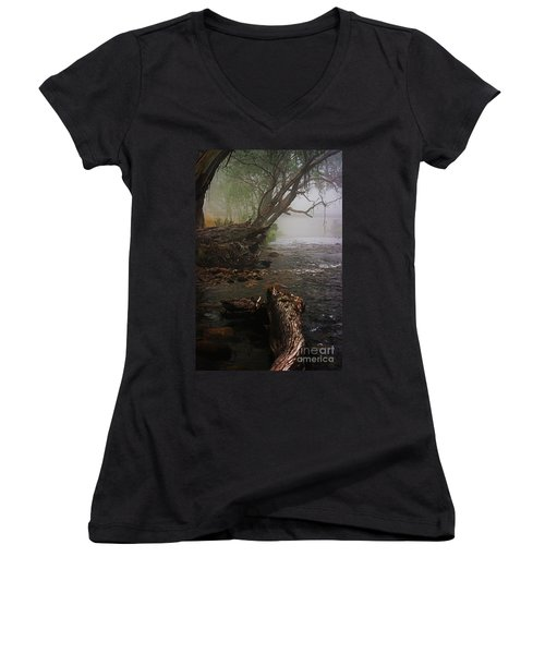Indeed It Was A Mystical Place Women's V-Neck