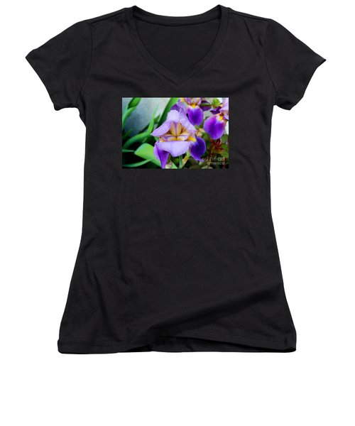 Iris From The Garden Women's V-Neck T-Shirt