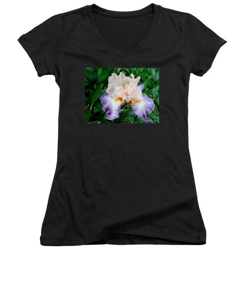 Irresistible Iris Women's V-Neck (Athletic Fit)