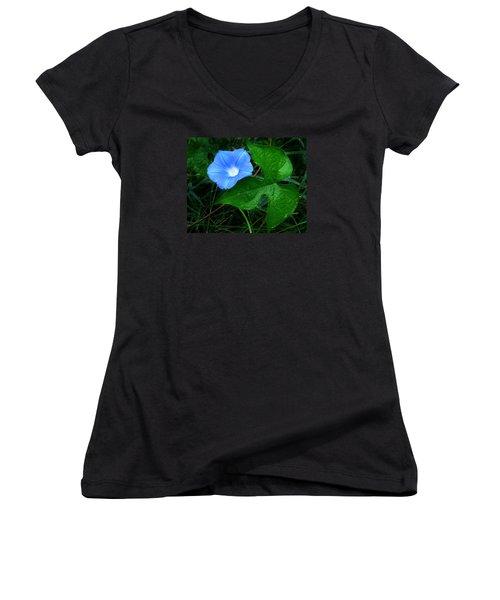 Wild Ivyleaf Morning Glory Women's V-Neck T-Shirt (Junior Cut)