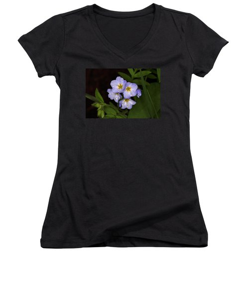 Women's V-Neck T-Shirt (Junior Cut) featuring the photograph Jacobs Ladder by Alan Vance Ley