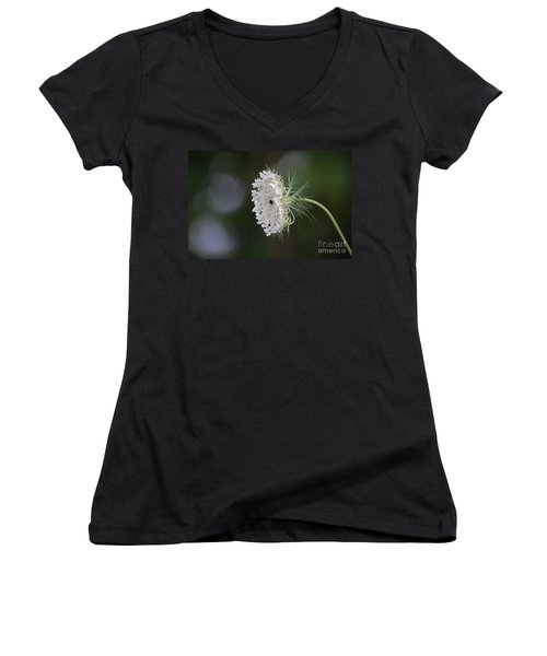 jammer Garden Lace 2 Women's V-Neck (Athletic Fit)