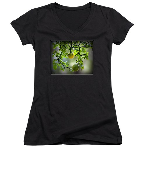 Japanese Orange Tree Women's V-Neck (Athletic Fit)