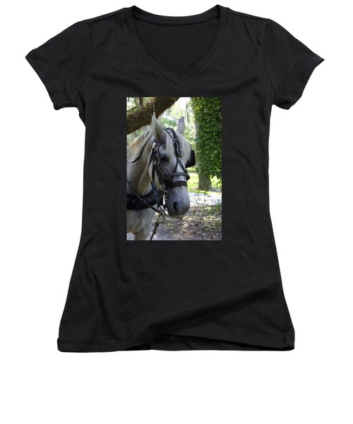 Jekyll Horse Women's V-Neck T-Shirt (Junior Cut) by Laurie Perry