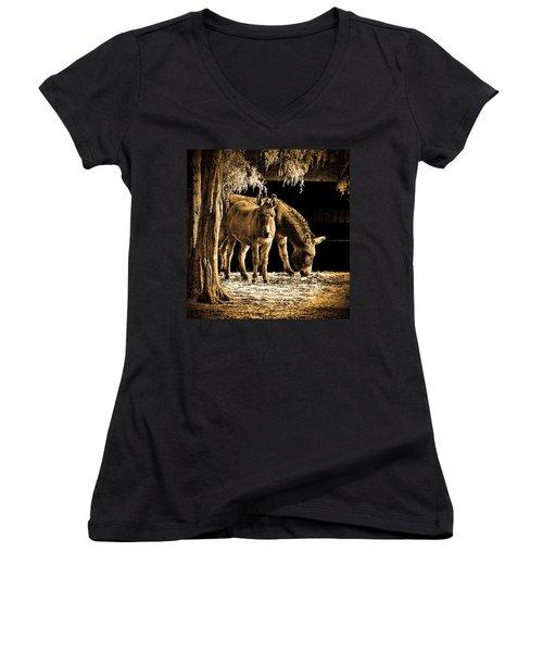 Jenny N Jack Women's V-Neck T-Shirt (Junior Cut) by Robert Geary