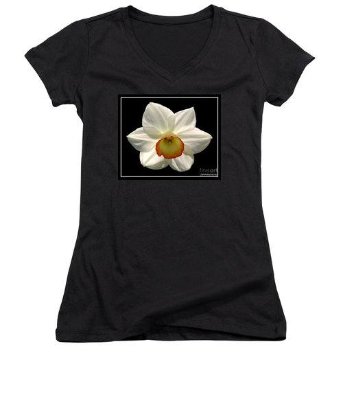 Women's V-Neck T-Shirt (Junior Cut) featuring the photograph Jonquil 1 by Rose Santuci-Sofranko