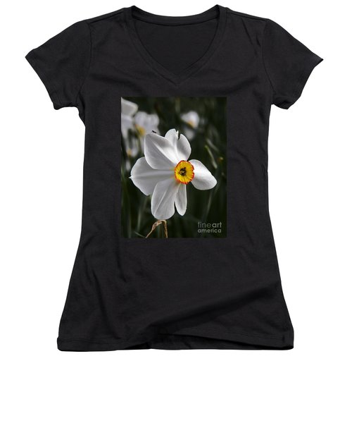 Women's V-Neck T-Shirt (Junior Cut) featuring the photograph Jonquil by Judy Via-Wolff