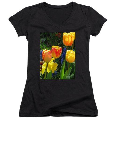 Jubilance Women's V-Neck T-Shirt (Junior Cut) by Rory Sagner