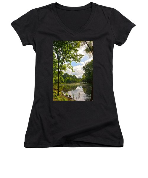 Women's V-Neck featuring the photograph July Fourth Duck Pond With Goose by Byron Varvarigos
