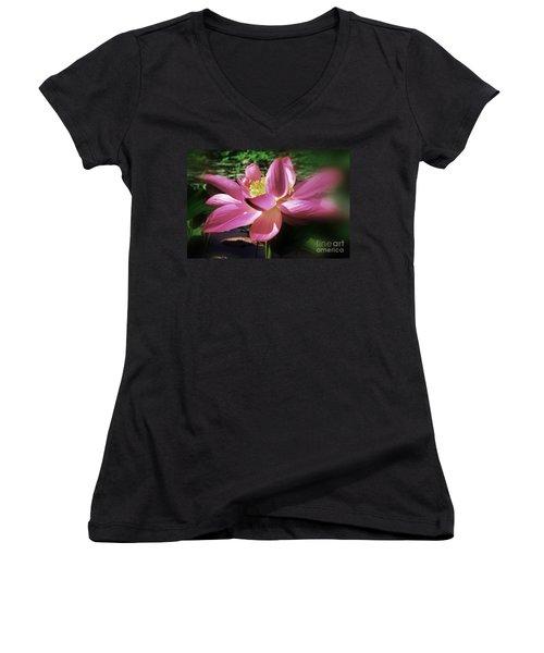 Women's V-Neck T-Shirt (Junior Cut) featuring the photograph Kenilworth Garden Three by John S