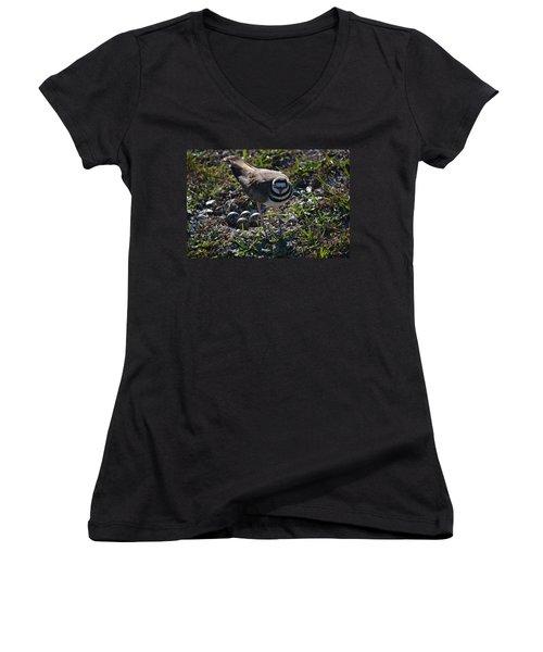 Killdeer Guarding Her Eggs Women's V-Neck T-Shirt