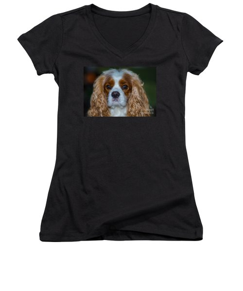 King Charles Women's V-Neck (Athletic Fit)