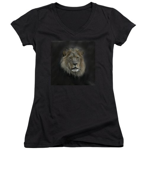 King Of Beasts Portrait Women's V-Neck T-Shirt