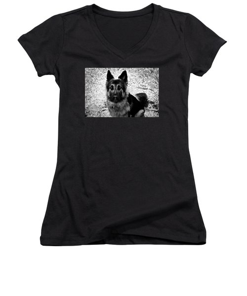 King Shepherd Dog - Monochrome  Women's V-Neck