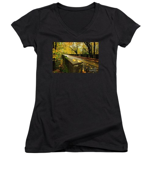 Leaves Of Gold Women's V-Neck (Athletic Fit)