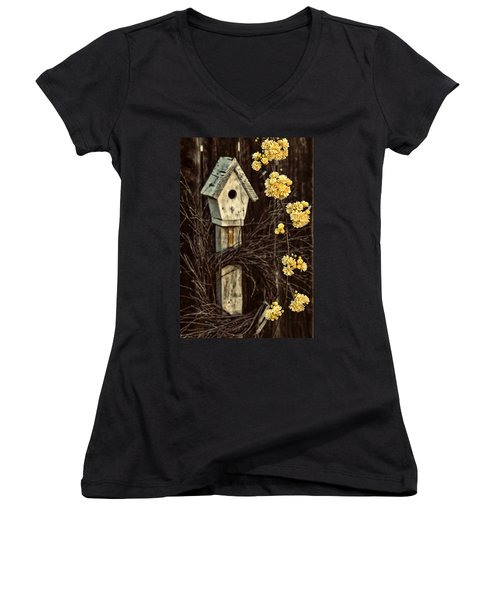 Lady Banks Roses Women's V-Neck T-Shirt (Junior Cut) by Caitlyn  Grasso