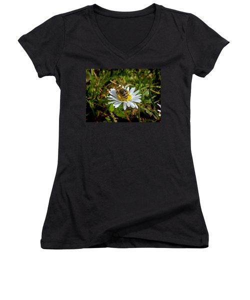 Women's V-Neck T-Shirt (Junior Cut) featuring the photograph Landed by Nina Ficur Feenan
