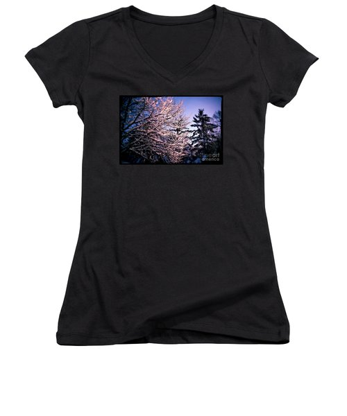 Last Peek Of Winter Sun Women's V-Neck