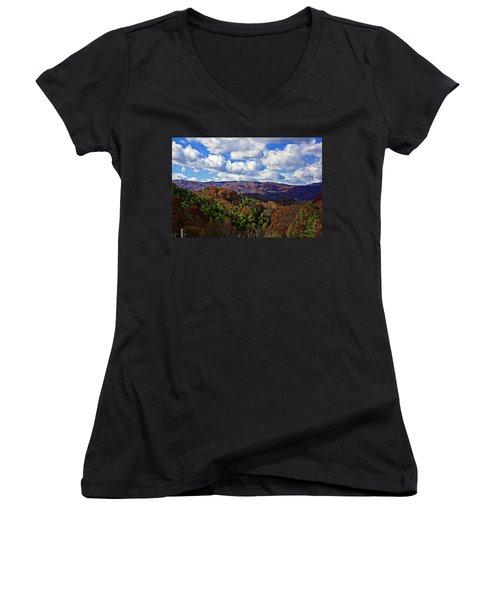 Late Autumn Beauty Women's V-Neck T-Shirt
