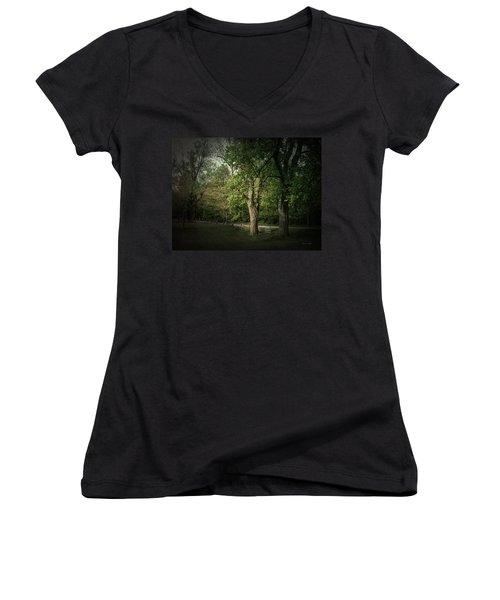 Late Day Drive Women's V-Neck T-Shirt (Junior Cut) by Cynthia Lassiter