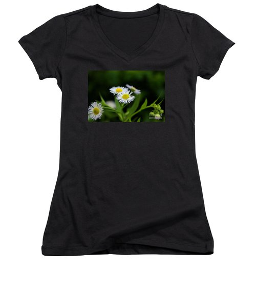 Late Summer Bloom Women's V-Neck (Athletic Fit)