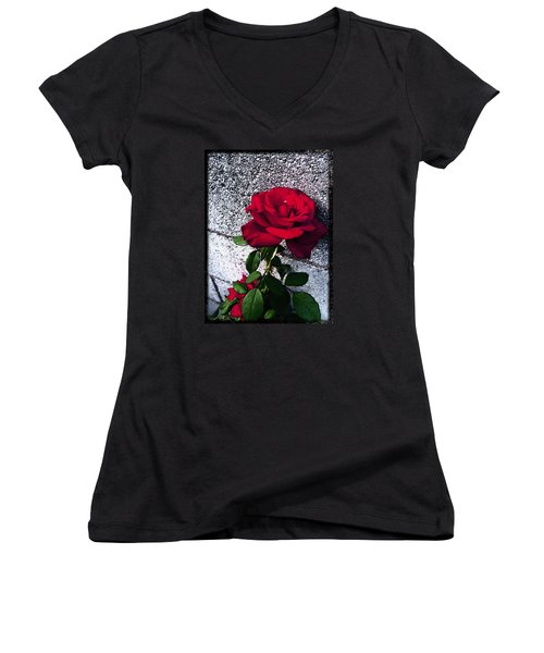 Women's V-Neck T-Shirt (Junior Cut) featuring the photograph Late Summer Rose by Shawna Rowe