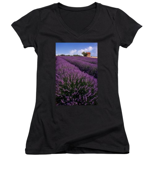 Lavender In Provence Women's V-Neck (Athletic Fit)