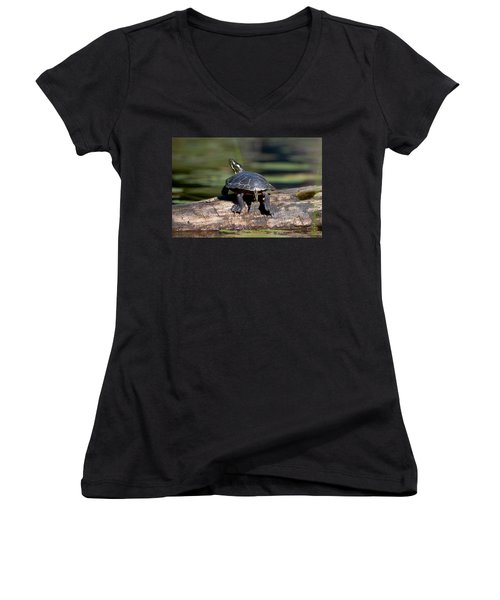 Lazy Day On A Log 6241 Women's V-Neck