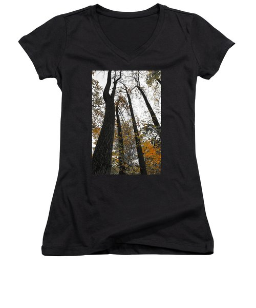 Women's V-Neck T-Shirt (Junior Cut) featuring the photograph Leaves Lost by Photographic Arts And Design Studio