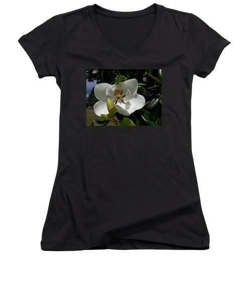 Lemon Magnolia Women's V-Neck T-Shirt (Junior Cut) by Caryl J Bohn