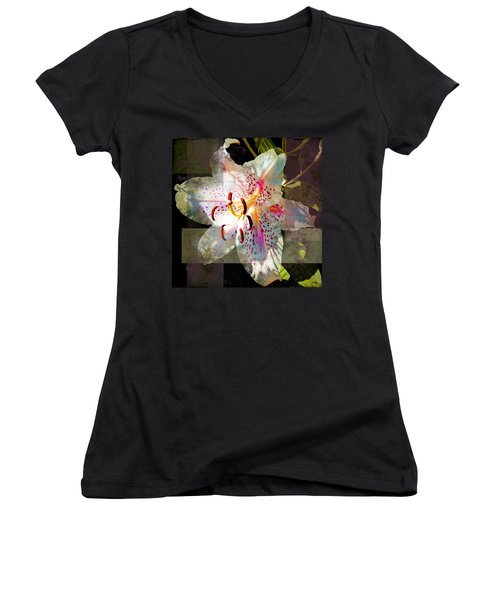Lily From Whitefish Point Michigan Women's V-Neck
