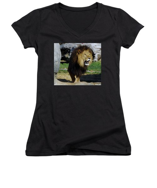 Lion 2 Women's V-Neck (Athletic Fit)