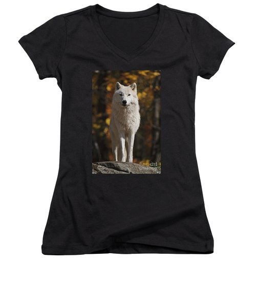 Women's V-Neck T-Shirt (Junior Cut) featuring the photograph Look Out by Wolves Only