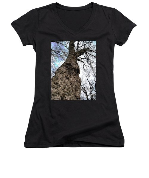 Women's V-Neck T-Shirt (Junior Cut) featuring the photograph Look Up Look Way Up by Nina Silver