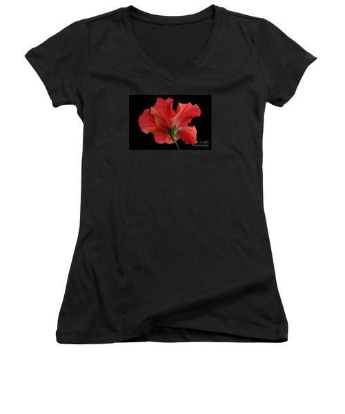 Women's V-Neck T-Shirt (Junior Cut) featuring the photograph Looking Back by Judy Whitton