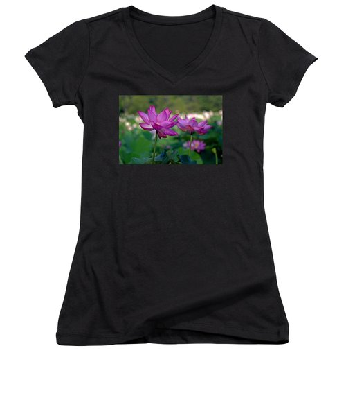 Women's V-Neck T-Shirt (Junior Cut) featuring the photograph Lotus Flowers by Jerry Gammon