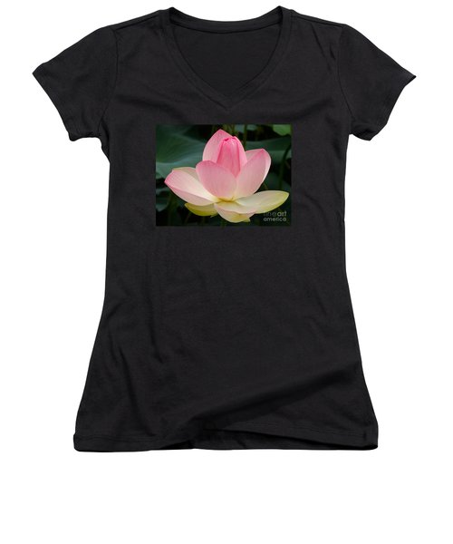 Lotus In Bloom Women's V-Neck (Athletic Fit)