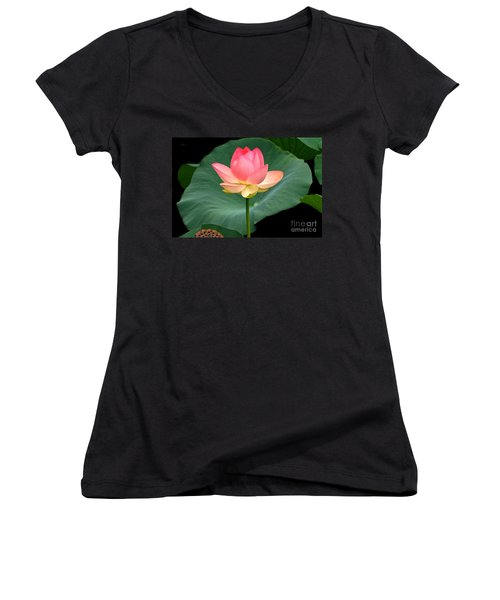 Lotus Of Late August Women's V-Neck (Athletic Fit)