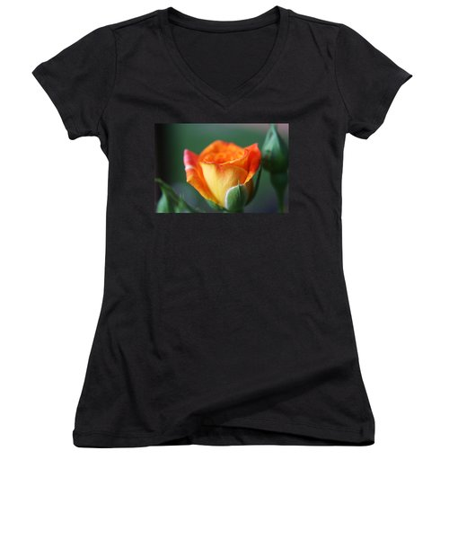 Women's V-Neck T-Shirt (Junior Cut) featuring the photograph Louisiana Orange Rose by Ester  Rogers