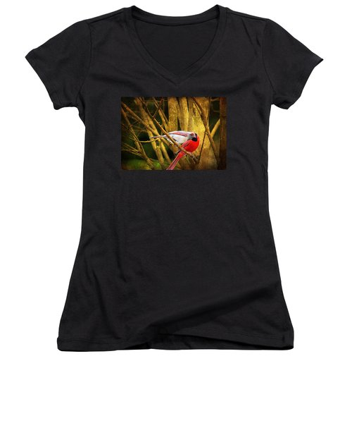 Women's V-Neck T-Shirt (Junior Cut) featuring the photograph Love In A Dark World by Trina  Ansel