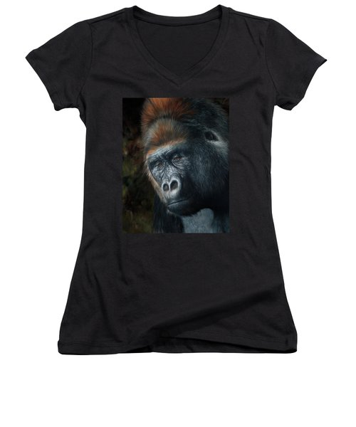 Lowland Gorilla Painting Women's V-Neck (Athletic Fit)