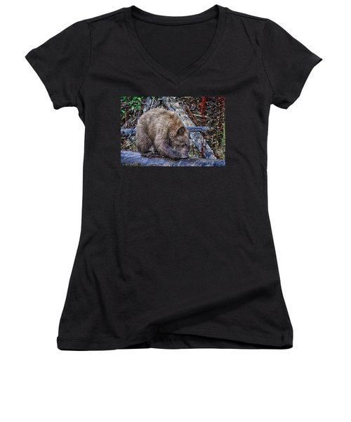 Women's V-Neck T-Shirt (Junior Cut) featuring the photograph Lunch Break by Jim Thompson