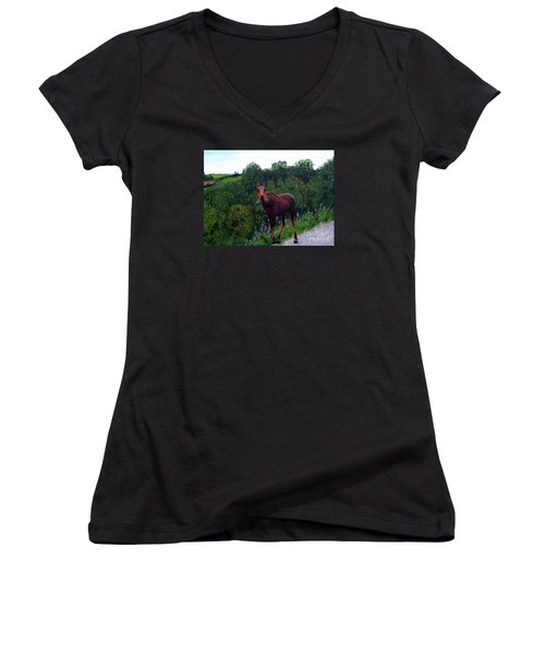Lupine Loving Moose Women's V-Neck T-Shirt (Junior Cut) by Barbara Griffin
