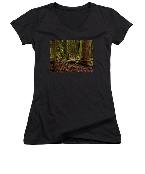 Lush Green Forest Women's V-Neck T-Shirt (Junior Cut) by Mary Mikawoz