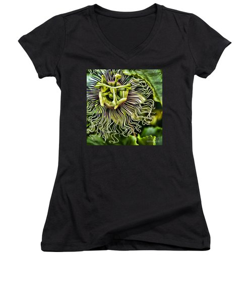 Mad Passion Women's V-Neck T-Shirt (Junior Cut) by Peggy Hughes